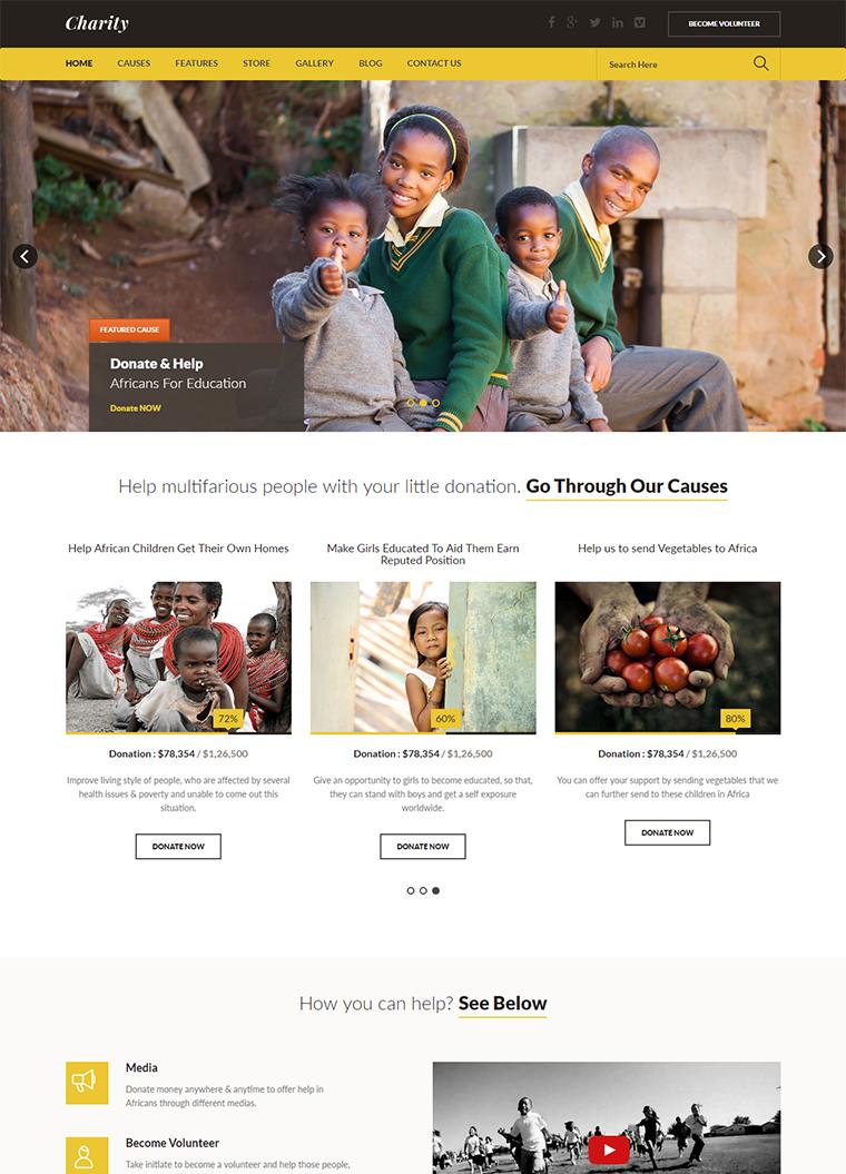 Charity Fundraising HTML Template: Buy Premium Charity Fundraising ...