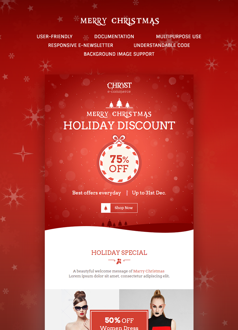 Christmas Offers Email Newsletter