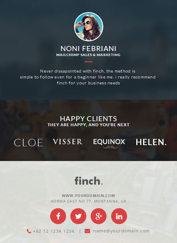 Offering Editable HTML Code With Finch Corporate Newsletter