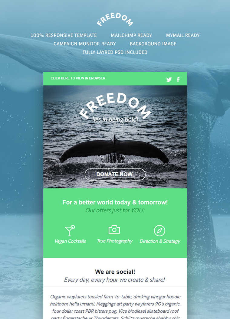 Freedom Newsletter Template