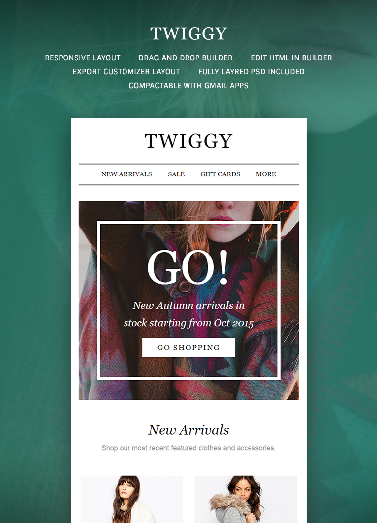 Twiggy Email Template