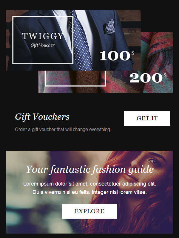 Builder Access Integrated With Twiggy: A Fashion E-Newsletter Template
