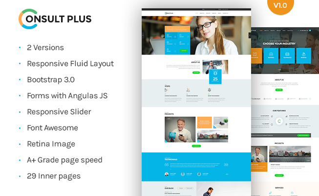 Consult Plus HTML Template